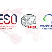 ESO-GAINS-WSO Early Career Investigators Virtual Workshop