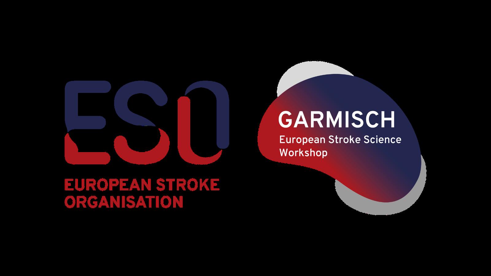 ESO 6th Garmisch Stroke Science Workshop