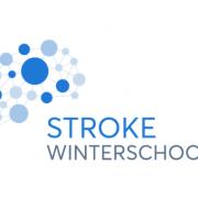 ESO - ESMINT - ESNR Stroke Winter School