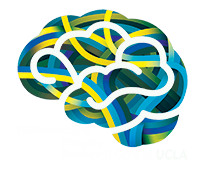 8th International Symposium on Collaterals to the Brain